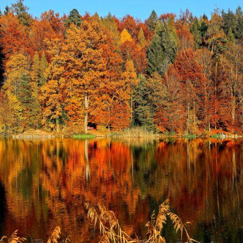 Herbst ist auch nur eine Jahreszeit - besser oder schlechter?